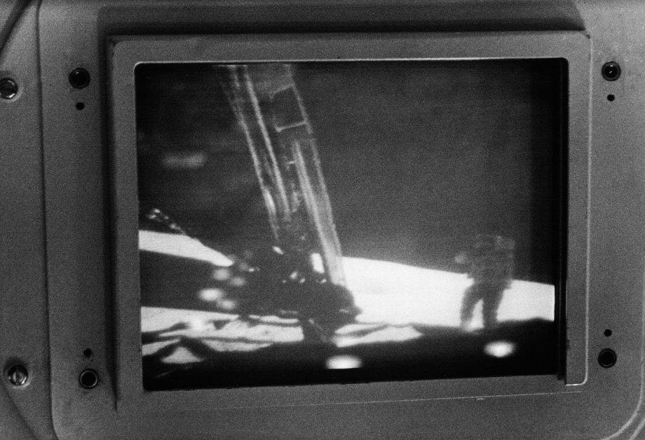 Apollo11Honeysuckle